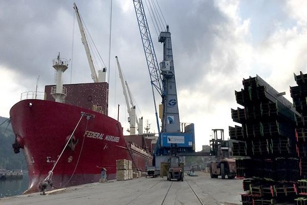 El Puerto de Pasajes abre convocatoria para explotar nueva terminal polivalente