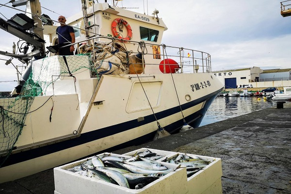 Puerto de Almería abre convocatoria para explotar Lonja de Pescado