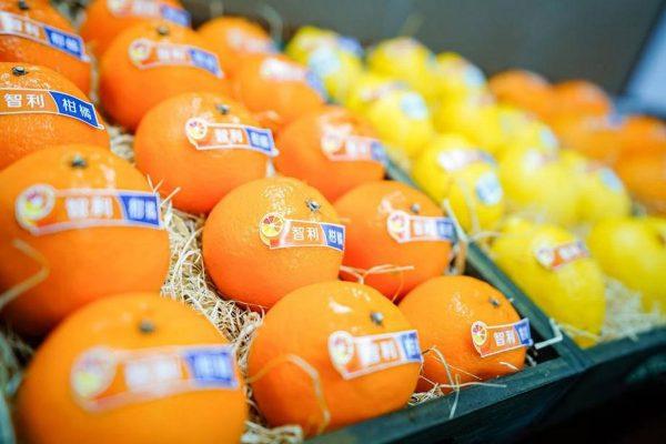 naranjas chilenas